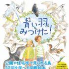 Aoi Hane Mitsuketa! Sagashite Miyou Mijika na Tori-tachi